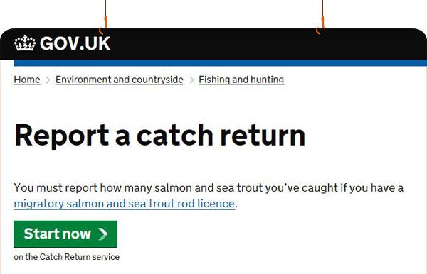 Report a catch return