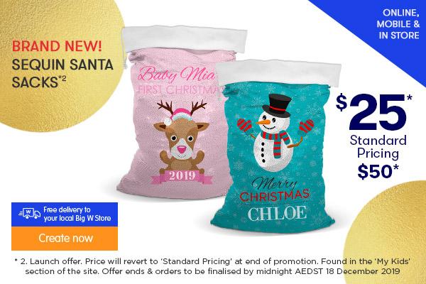 BRAND NEW $25 for Sequin Santa Sack  *2